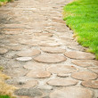 Beautiful garden path — Stock Photo #12067165