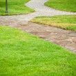 Beautiful garden path — Stock Photo #12067167