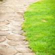 Beautiful garden path — Stock Photo #12067169