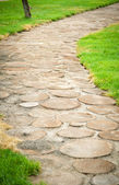 Beautiful garden path — Stock Photo