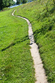 Single path on to the meadow — Stock Photo