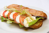 Sandwich with tomato and mozarella — ストック写真