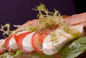 Sandwich aux tomates et mozzarella — Photo