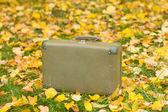 Kufr v podzimním parku — Stock fotografie