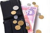 Oekraïense geld — Stockfoto