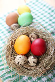 Eggs for the Easter — Stock Photo