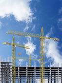 Cranes on the sky background — Stock Photo
