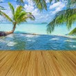 Maldives with palm, sand and ocean — Foto de Stock