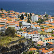 Funchal city — Stock Photo #19617225