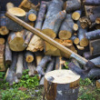 Stump with an ax and firewood — Stock Photo