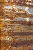 Stripe rust background — Stock Photo