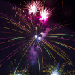Colorful fireworks on black sky  — Stock Photo #41671695
