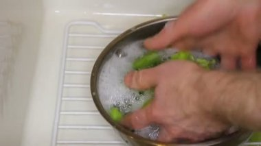 Hands Washing Celery in a Bowl of Soapy Water in the Sink — Stock Video