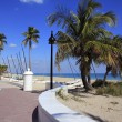 Fort Lauderdale Beach Park Looking North — Stock Photo #22947894