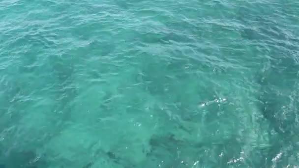 Vert bleu eau océanique de floride — Vidéo