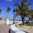 Fort Lauderdale Beach Park Looking North — Stock Photo #24534997