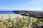 Pier in Deerfield Beach — ストック写真