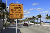 Turtle Nesting Sign — Stock fotografie