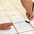 Cleaning Grout — Stock Photo #42818657