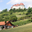 Castle Veliki Tabot and farm — Stock Photo