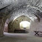 Brick cellar — Stock Photo #12469227