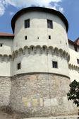 Torre do castelo — Foto Stock