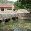 Stock Photo: Farm houses and bridge
