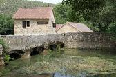 Farm houses and bridge — Stock Photo
