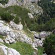 Stock Photo: Mountain in Durmitor