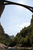 Bridge and raft in Tara — Stock Photo