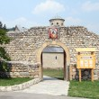 Entrance of monastery - Stok fotoraf