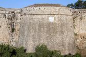 塔和墙 — 图库照片