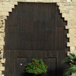 Big wooden door — Foto de stock #16657447