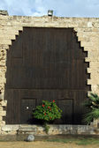 Big wooden door — Stock Photo