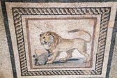 Lion on mosaic — Stock Photo
