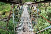 Bridge a nd green — Stock Photo