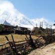 Stock Photo: Manaslu and village