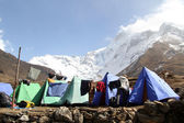 Camping near mount — Stock Photo