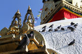 Birds and stupa — Stock fotografie