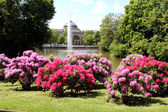 Wiesbaden Kurpark — Stock Photo