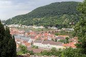 Widok na heidelberg — Zdjęcie stockowe