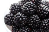 Fresh blackberries — 图库照片