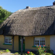 Irish traditional cottage - Stock Photo