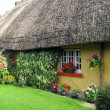 Irish traditional cottage — Stock Photo