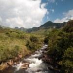 Montanhas Drakensberg — Fotografia Stock  #12590737