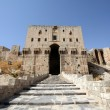 Aleppo Castle — Stock Photo