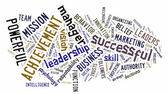 Leadership Word Cloud — 图库照片