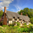 Anne Hathaway's Cottage — Stock Photo #17330647