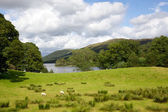 Coniston Water — Stock Photo