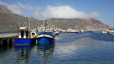 Hout Bay Harbour — Photo